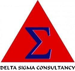 Delta Sigma Consultancy